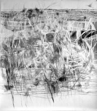 ohne Titel | 2013 | Bleistift auf Papier | 150 x 172 cm