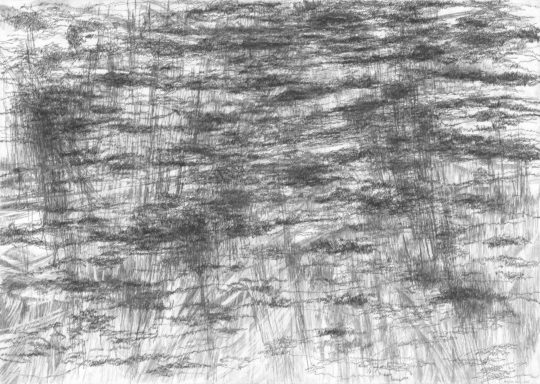 Atempartitur | 2015 | Bleistift und Kohlepapier auf Papier | 88 x 62 cm